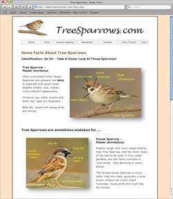 Tree Sparrows Web Site