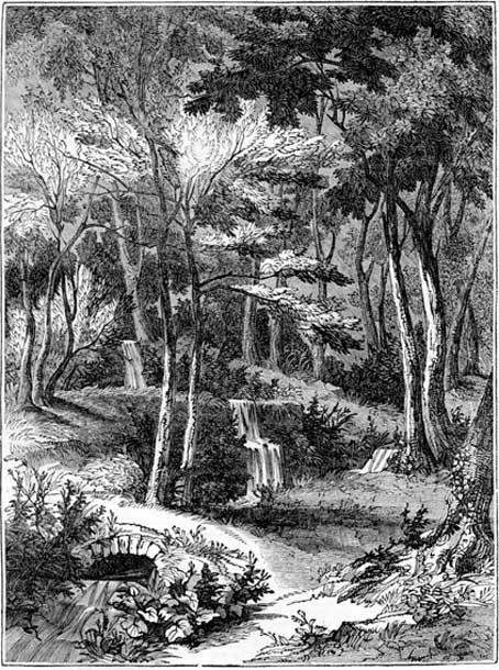 Woodcut of Alum Spring Hackfall